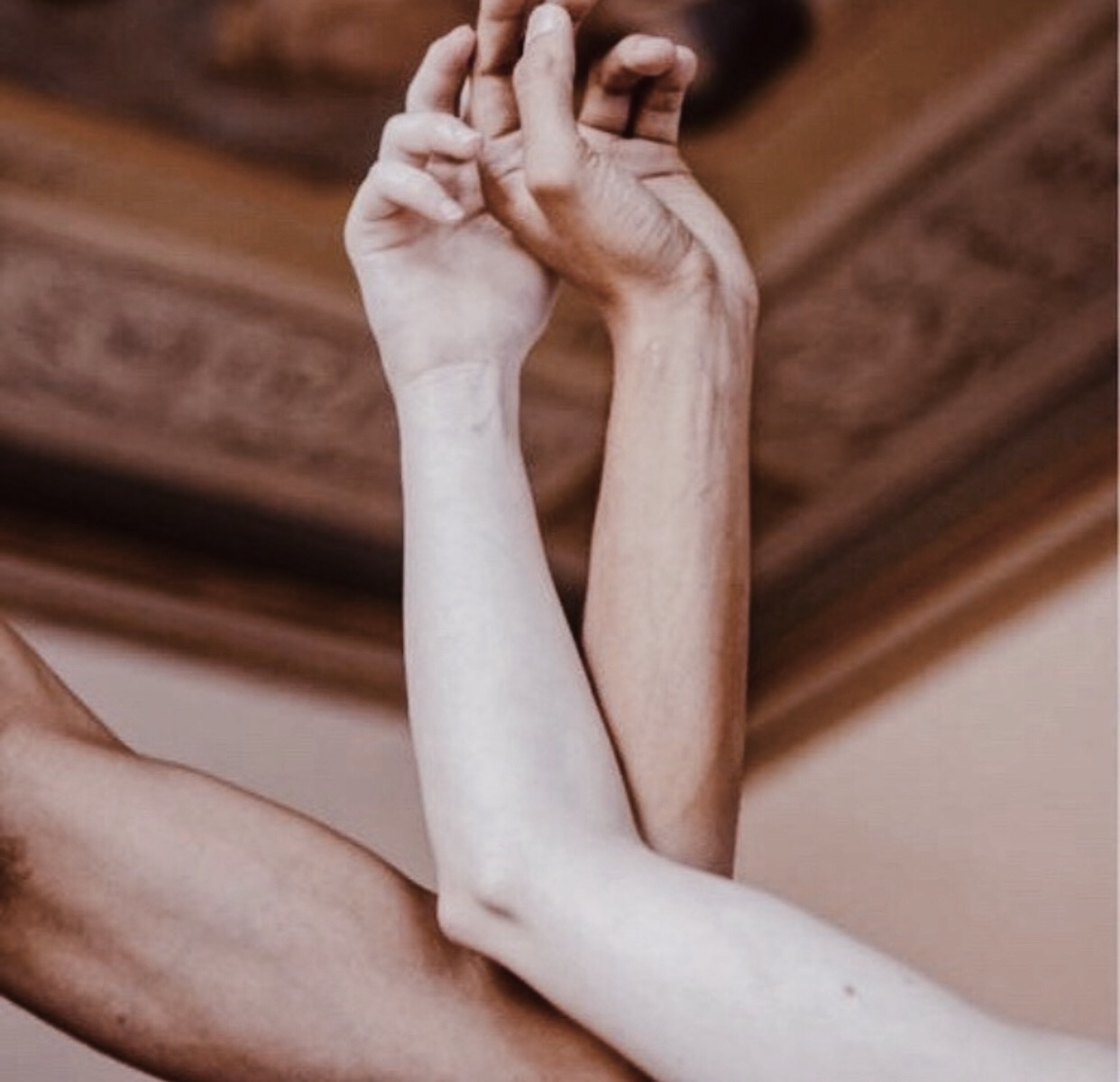 aesthetics, love, and difference between us image