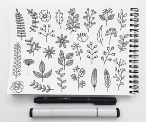 drawing, art, and plants image