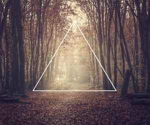 triangle, hipster, and forest image