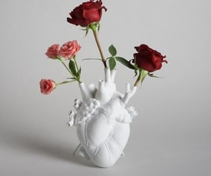heart, rose, and vase image