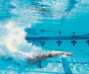blue, start, and swimmer image