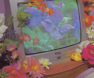 aesthetic, flowers, and tv image