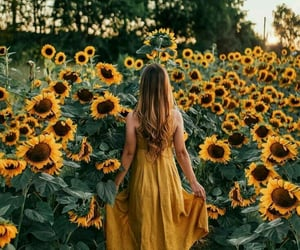 girl, sunflower, and yellow image
