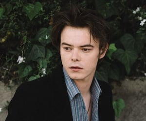 celebrity, stranger things, and charlie heaton image