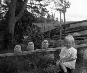 owl, black and white, and girl image