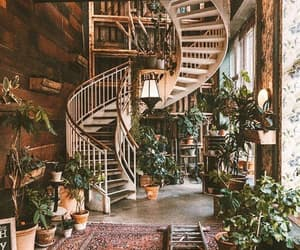 plants, home, and house image