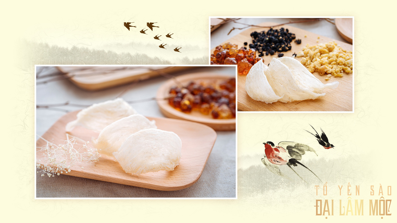 article, edible bird nest, and yến sào image