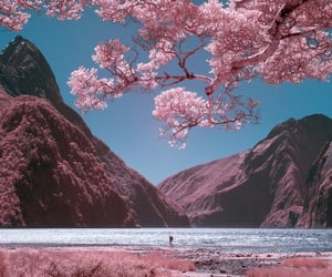 pink, nature, and mountains image