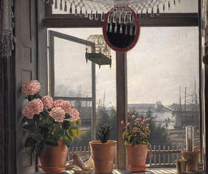 botany, flower, and window view image