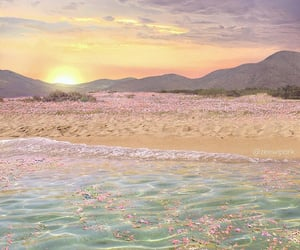 beach, flowers, and pink image