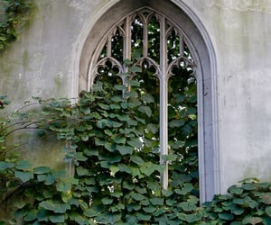 castle, green, and leaf image