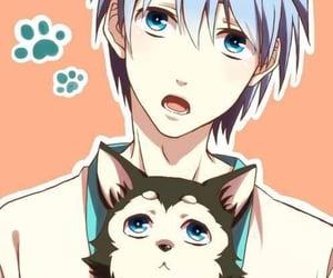 animal, anime, and blue eyes image