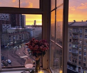 flowers, view, and window image