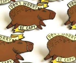 capybara, don't worry, and fondo image