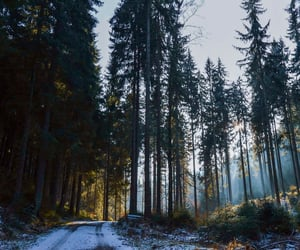 czech, snow, and explore image