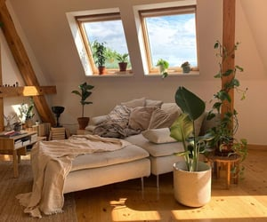 aesthetic, interior, and plants image