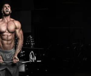 lose weight, build muscle, and weight loss pills image