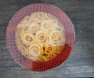 etsy, free shipping, and real rose image