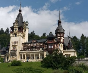 castle, forest, and hill image