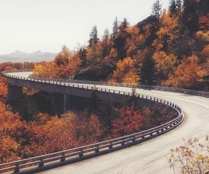 autumn, road, and fall image