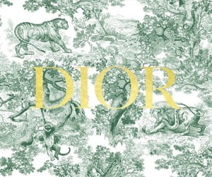 background, pattern, and dior image