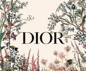 aesthetic, background, and dior image