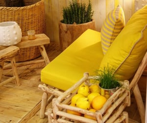 chairs, lemons, and sit image