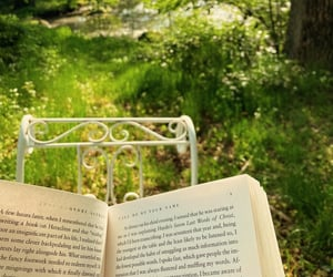 aesthetic, books, and countryside image