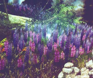 dreamy, flower, and lavender image