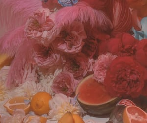 orange, feathers, and fruit image