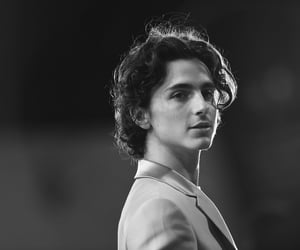 black and white and timothee chalamet image
