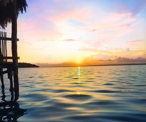 Aloha, pink, and sea image
