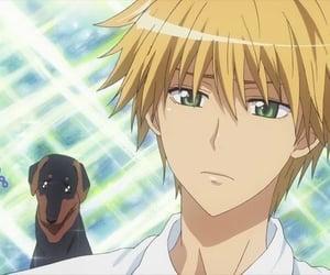 anime, usui, and kaichou wa maid sama image