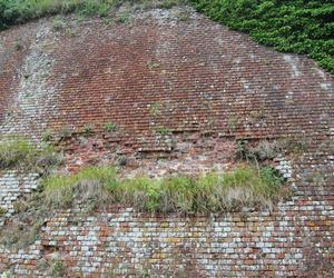 bricks, france, and wall image
