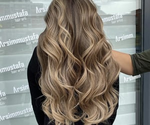 blonde, brown, and curly image