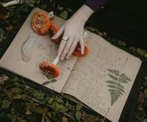 book, witch, and mushroom image