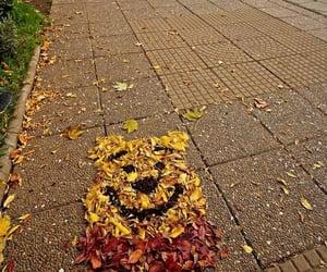 autumn, naturaleza, and photo image