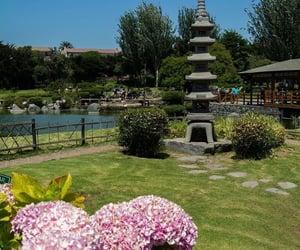 chile, jardín japones, and flowers image