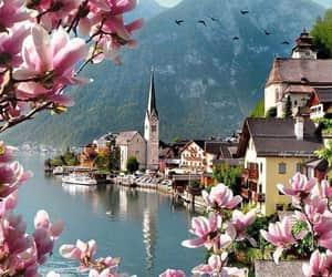 travel, spring, and austria image