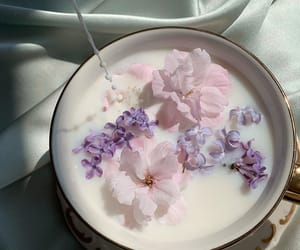 flowers, milk, and aesthetic image
