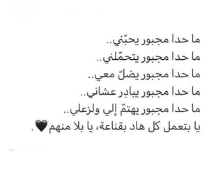 Image by souzan ali