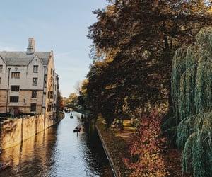 aesthetics, architecture, and autumn image