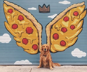 dog, clouds, and pizza image