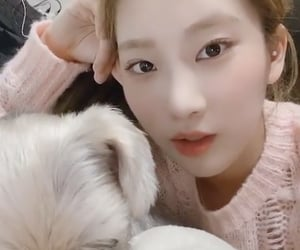 dog, gf, and kpop image