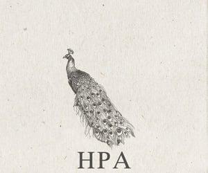 hera, mythology, and greek image