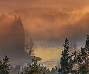 aesthetic, beautiful, and fog image