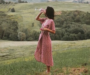 dress, wine, and nature image