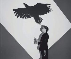 b&w, man, and bird image
