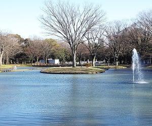 fountains, japan, and shibuya image