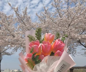 flowers, soft, and love image